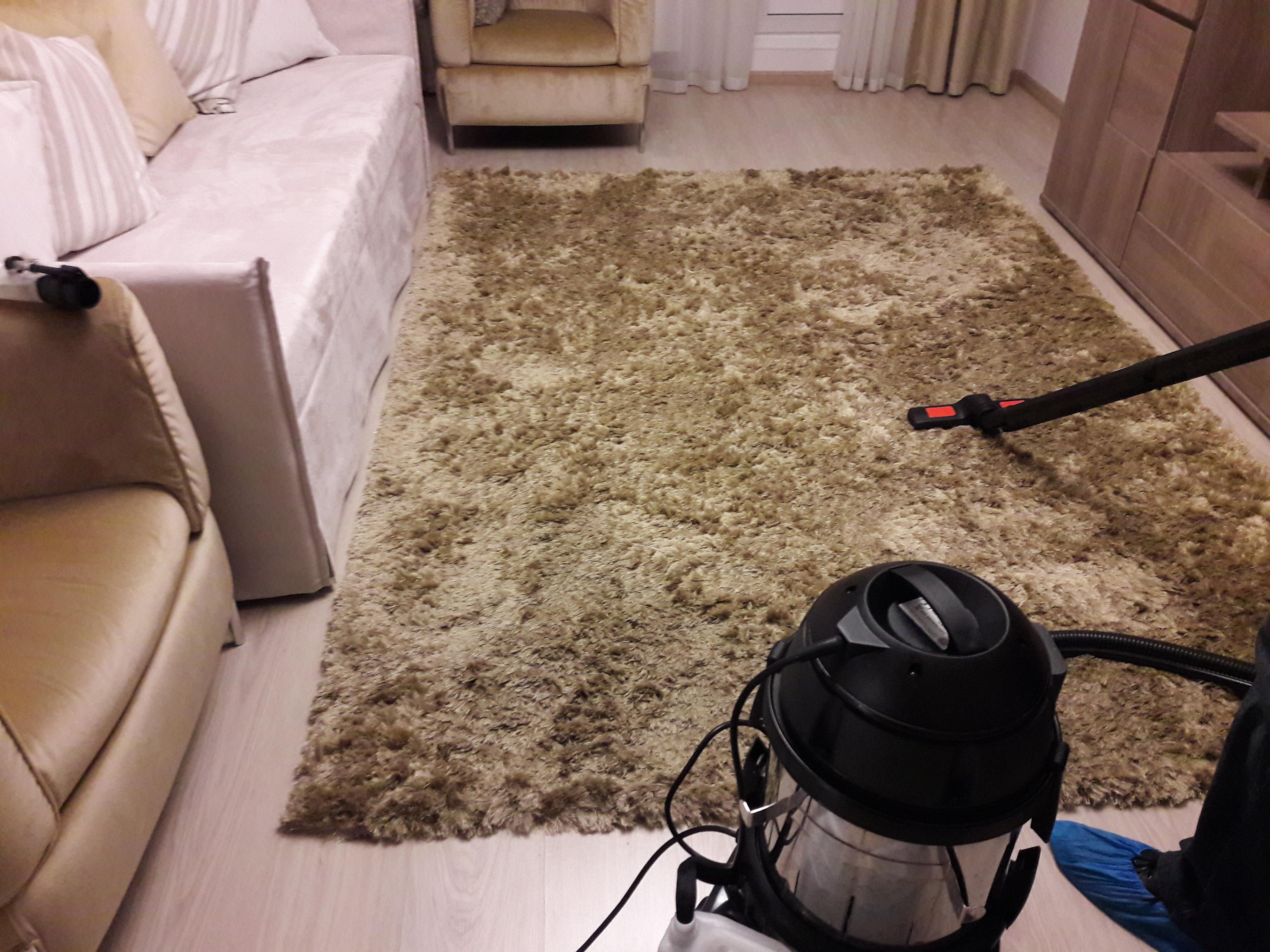 Выведения пятен с ковров
